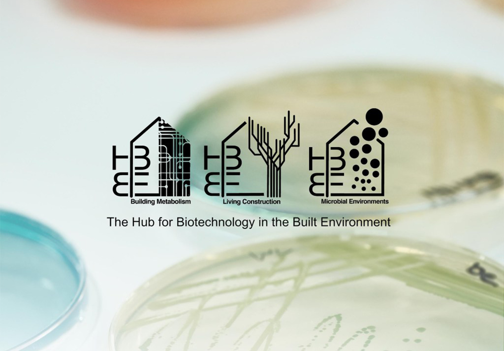 Hub For Biotechnology In The Built Environment Faulknerbrowns Architects Lh